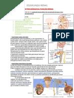 Resumo - Fisiologia Renal