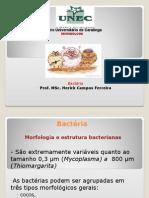 4 - Bactérias