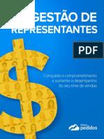 livro-gestao-representantes