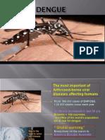 Bimbingan_Dengue Dan DHF Sambo Dadik