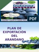 Arandanos Exportacion Final