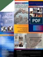 Soi Brochure 04-2008 Web