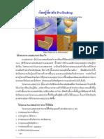 Guide Prodestop