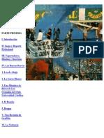 Diagnóstico Antropológico de Las Barras Bravas y La Violencia Ligada Al Fútbol