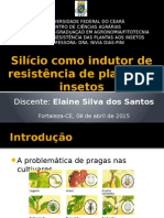 Silício Como Indutor de Resistência de Plantas a Insetos