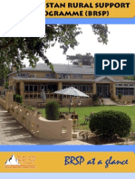 BRSP Organizational Profile