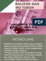 Metabolisme Dan Suhu Tubuh2