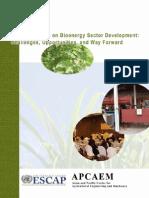 bioenergy.pdf
