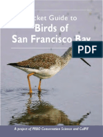 Pocket Guide to Birds of San Francisco Bay