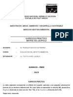 Matriz Leopold Ejercicio Práctico[1]