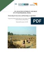 Value chain of wheat n rice in U.P..pdf