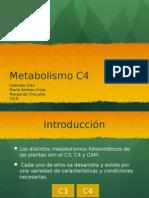 Metabolismo c4