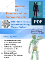 Organization and Function of the Nervous System