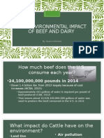 the environmental impact of eating beef