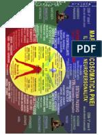 Mappa Psicosomatica PNEI 2015 (Psiconeuroendocrinoimmunologia) by Ticinosthetics Gainzschool