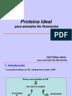 Proteína Ideal