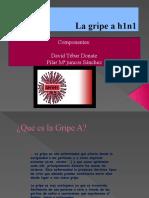 La gripe a h1n1, David Tebar, Pilar Mº Juncos