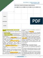 Direito Constituciona inss 2015.pdf