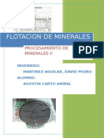 FLOTACION2015-1 AGUSTIN.docx