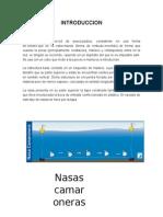 nasas