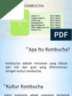 Ppt Kombucha 5
