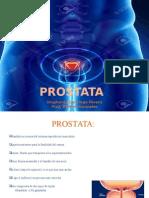 presentacion prostata mia
