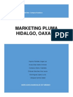 2do Avance Plan de Marketing Pluma Hidalgo