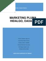 PLAN-DE-MKT-PLUMA 2° parcial docx.pdf