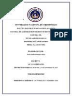 Orozco Josue,TH,Informe 2