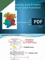4. Peptida Dan Protein (2013)