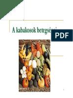 kabakosok_betegsegei.pdf