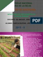 impacto de los fertilizantes en la salud humana.pptx