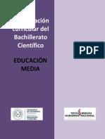 Competencias y Capacidades MEC