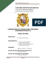 Secado Informe.docx