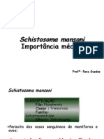 085840_Schistosoma mansoni