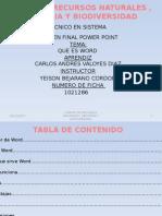 Examen Final Power Point