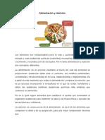 Alimentación y Nutrición Completo