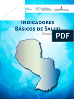 IBS Paraguay 2015