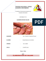 ELABORACIÓN DE SALAMI.docx