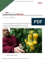 Los Alimentos Transgénicos, Ventajas e Inconvenientes ... _ ZoomNews