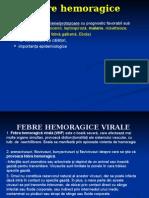 Febre Hemoragice 2