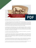 8 Razones Medicas Para No Comer Cerdo