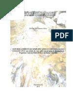 Estudos Ambientais Simplificados e o Movimento Rio Cubatão Vivo (SC)