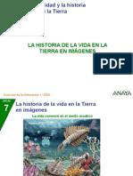 P Historiavida 124