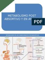 Metabolismo en Ayunas-postabsortivos