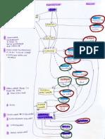 Procedura CEDO P14