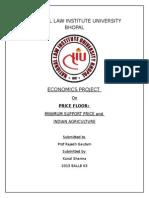 Economics Project Price Floor