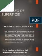 Analisis de Los Alimentos 3 Muesteo de Superficies
