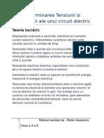 Referat Fizica-Curent Electric