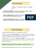 Clase Mendel Completa (1)